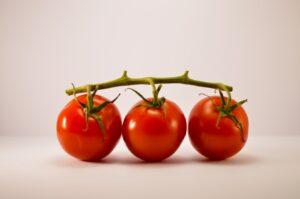 tomatoes sun tan
