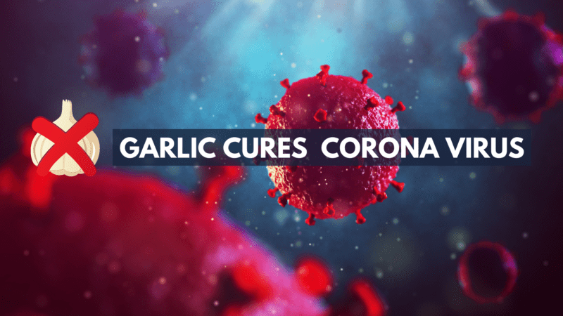 Myths & Rumours about Corona Virus You Should Ignore