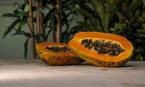 papaya immune boost food