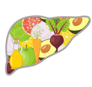 understanding the role of diet in liver
